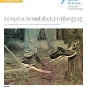 Titelbild von Europäische Mobilität am Übergang II - Fachkräfte für grenzüberschreitende Angebote gewinnen und stärken